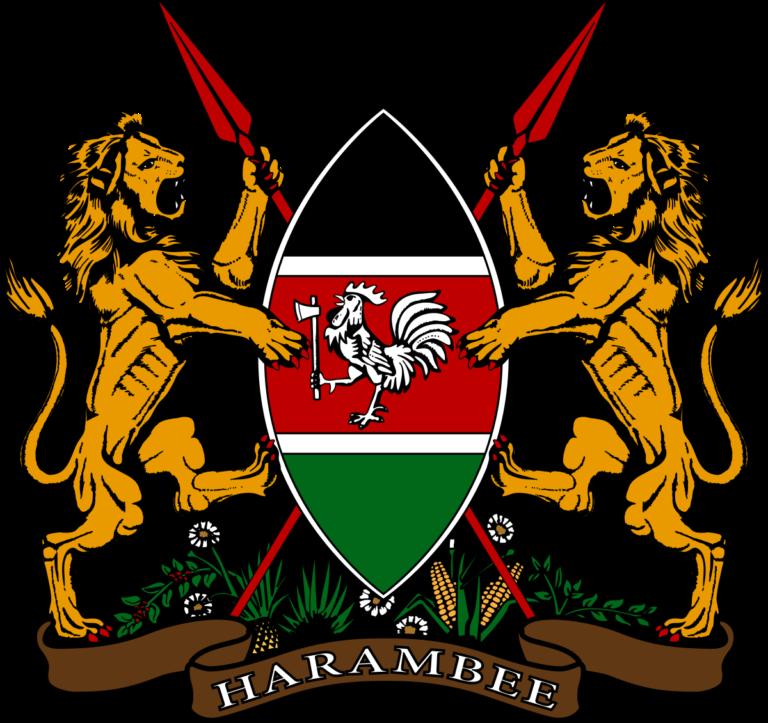 رد كيني حذر على إعلان السلطات الصومالية إعادة علاقتها الدبلوماسية مع كينيا!
